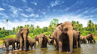 Sri Lanka Cheapest Countries Pakistan Travel Srilanka