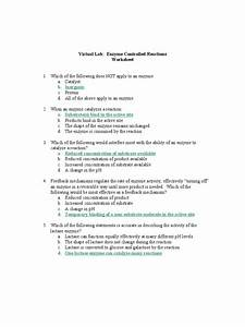 Enzyme Kinetics Worksheet