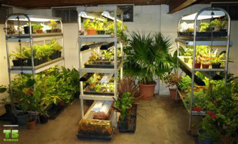 How To Set Up An Indoors Garden  T5 Grow Light Fixtures