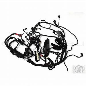 Bmw R1200gs Adventure Main Wiring Harness 61117726669