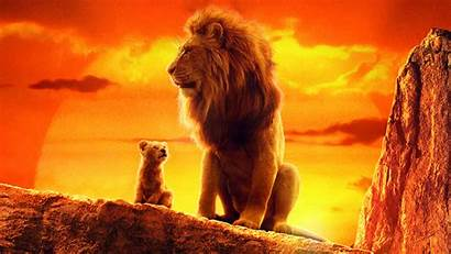 Lion King 4k Wallpapers Resolution Simba Disney