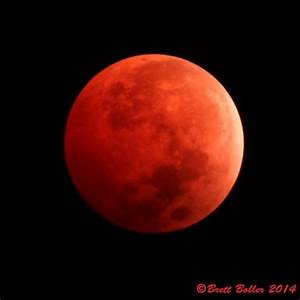 Photos: Breathtaking images of the blood moon | Photo ...