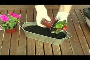 Blumenkästen Bepflanzen Sonnig : video blumenk sten gestalten tipps und ideen f r eine sommerliche bepflanzung ~ Frokenaadalensverden.com Haus und Dekorationen