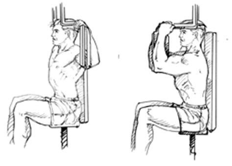 Pec Deck Exercise Without Machine by Pec Deck Flyes Exercise Website Of Vidulead