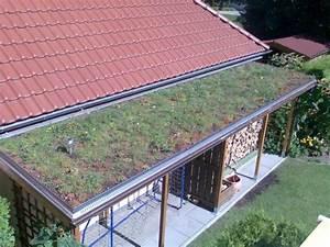 überdachung Für Kaminholz : erfahrungsbericht der dachbegr nung ratgeber von www ~ Michelbontemps.com Haus und Dekorationen