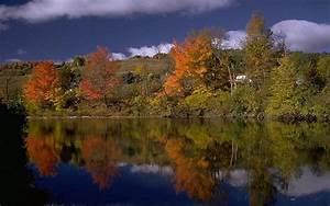 Schöne Herbstbilder Kostenlos : bilder herbst kostenlos herbst clipart kostenlos ~ A.2002-acura-tl-radio.info Haus und Dekorationen