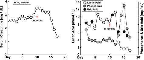 acute renal failure and type b lactic acidosis as manifestation of extranodal t cell