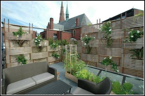 hohe pflanzen als sichtschutz balkon  page beste
