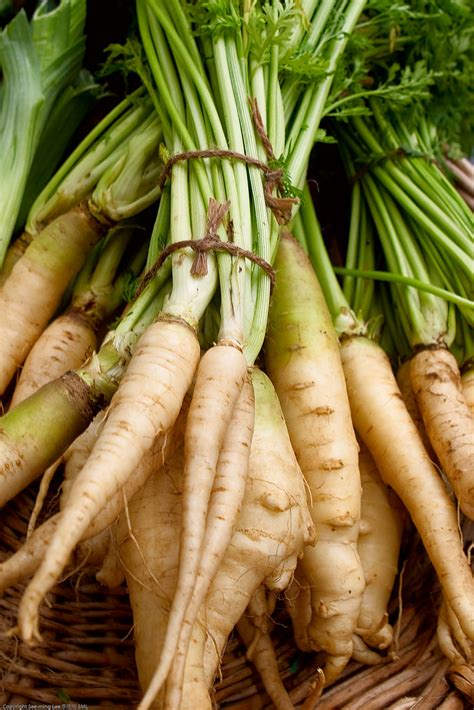 How To Have A Parsnip Party In Your Kitchen  Fill Your