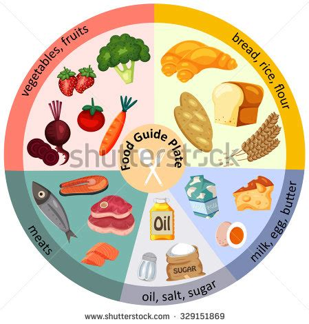 Diagram Of Healthy Plate by Guide Plate Clipart Clipground