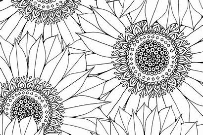 Sunflower Patterns Colouring Pattern Coloring Pages Adult