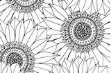 Patterns Sunflower Colouring Pages Coloring Adult Pattern Drawing Pretty Sketch Hobbycraft Craft Sunflowers Printable Colour Drawings Crafts Printables Doodles Natural sketch template