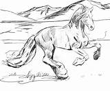 Coloring Horse Running Something Different sketch template