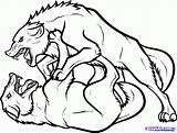 Wolf Wolves Fighting Draw Coloring Drawing Step Pages Fight Drawings Anime Animals Winged Wolfs Sheets Cool Clipart Clip Forest Tattoo sketch template