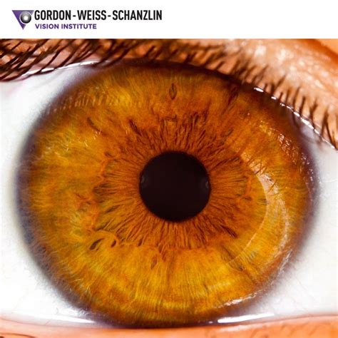 Common Eye Colors For by Although Brown Are The Most Common Eye Color In The