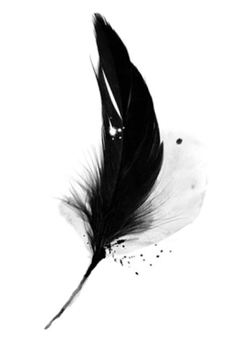A Black Feather Tattoo Sample  Tattoos Book