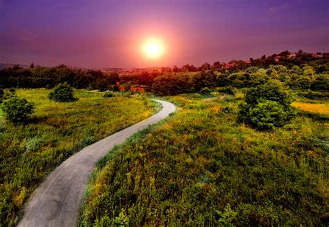 wallpaper pathway bright sun summer hd nature
