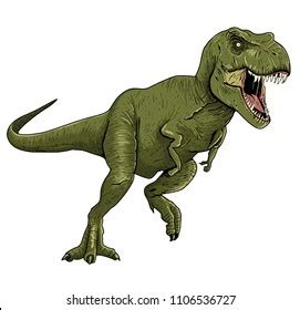 rex images stock  vectors shutterstock