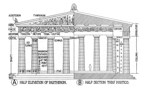 Architectural Elements Of The Parthenon (illustration