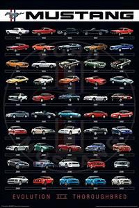 mustangs through the years - Pesquisa Google   Mustang cars, Ford mustang, Mustang