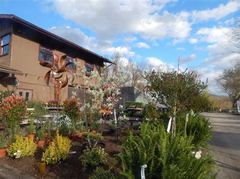 A Bounty Of Color At Willow Ridge Nursery & Garden Center