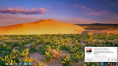 Bing Desktop Wallpapers Chromebook Daily Background Microsoft