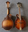 MUSICAL INSTRUMENTS: STRING INSTRUMENTS (PLUCKING)
