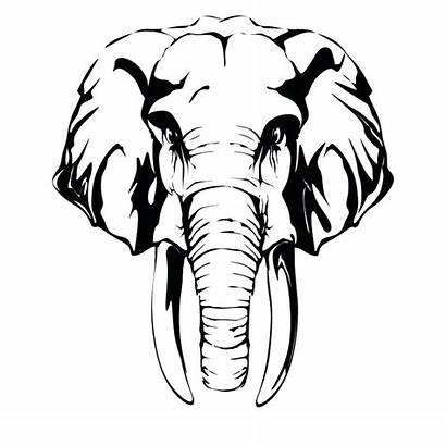 Elephant Head Coloring Printable Pages Getcolorings