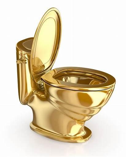 Toilet Golden Lid Open Expensive Gold Illustration