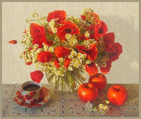 gifparadise red poppy field