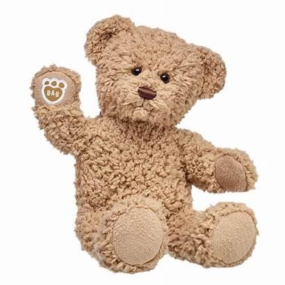 Teddy Bear Brown Bears Build Timeless Stuffed