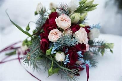 Bouquet Winter Christmas Flowers Branches Stunning Spirit