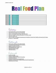 printables With meal plan template google docs