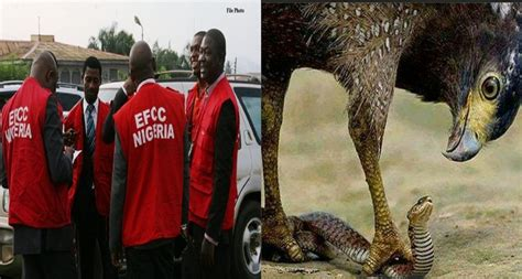 Efcc Reacts To The Story Of Money-swallowing Snake In Jamb