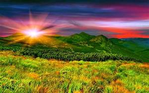 """Wallpaper: Wallpaper """"Best Quotes Ever of Nature"""""""