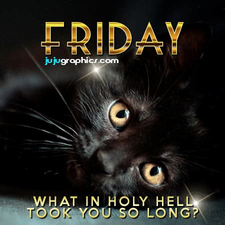 friday   holy hell    long graphics