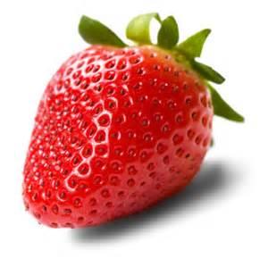 Erdbeeren - Lebensmittel-Warenkunde Vitamin E