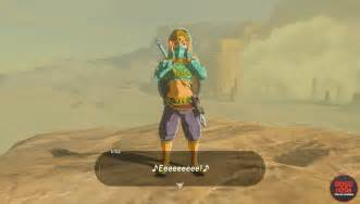 Breath the Wild of Zelda Gerudo Outfit