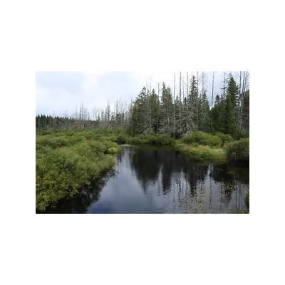 Headwaters Wilderness - Wikiwand
