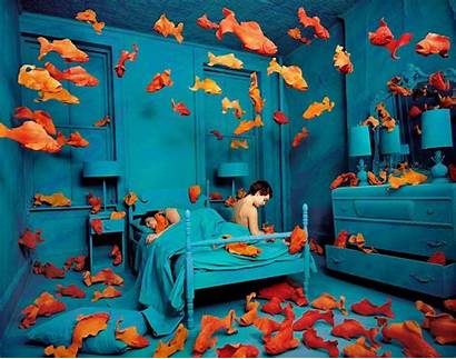 Cool Backgrounds Teenagers Sandy Skoglund Fish Gold