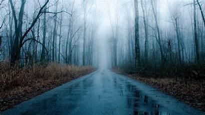 Rainy 1080p Wallpapers Rain Winter Forest Foggy