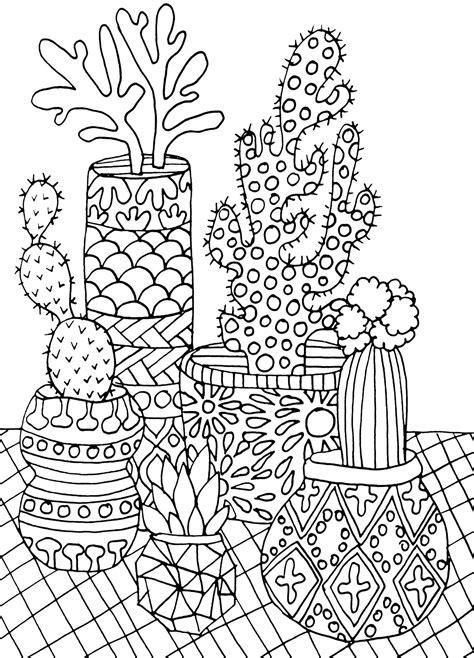 Amazon com: Succulents Portable Adult Coloring Book (31