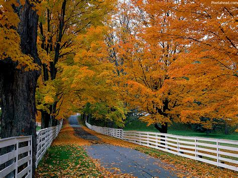 Beautiful Fall Backgrounds Hd autumn wallpapers hd beautiful autumn wallpapers hd