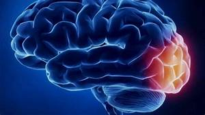 Neurofeedback Training  Therapy Rewire The Brain For