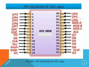 Interfacing Of Adc 0808