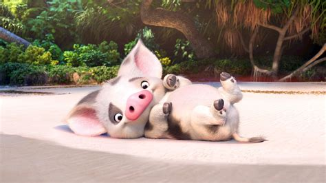 High Resolution Iphone Wallpaper Pua Moana Disney Movie Pig Wallpaper 7417