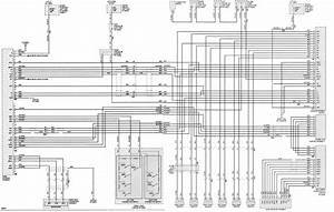 Toyota Vios Car Stereo Wiring Diagram