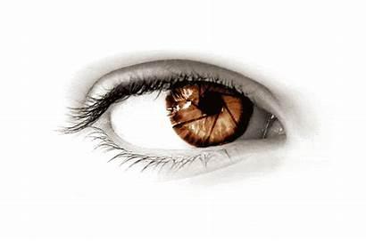 Eyes Brown Eye Dark Ingo Anders Schweiz