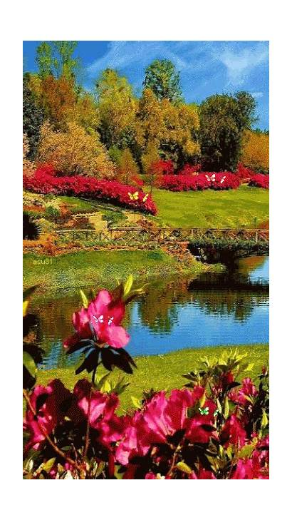 Nature Wallpapers Phone Nice Amazing Relajante Landscapes