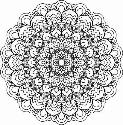Mandala Clipart Floral Circle Transparent Webstockreview Iv